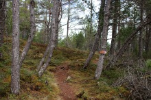 Entering Blåfjell