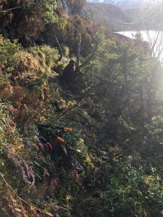 Trail work by Djupvikvatnet