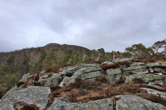 Up the south ridge