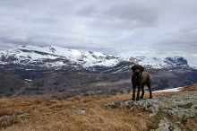 On the Jøtelshaugen high point