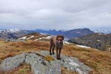 On Høgefjellet high pint
