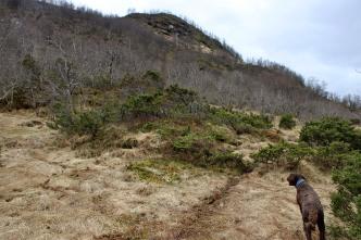 Off-trail towards Jarstadheia