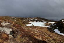 On the mountain plateau