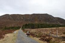 Towards Storehanen