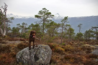 On top of Søråsen
