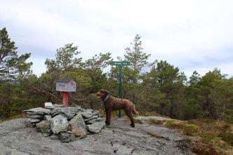 On top of Bøheia