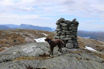 On top of Blåfjellet
