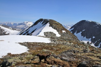 Towards Mannefjellet's south top