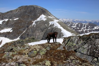 On Mannefjellet's south top
