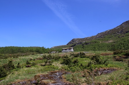 Approaching Vindholen
