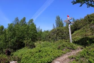 Åsenakken/Nokkenibba fork. I came down from Åsenakken