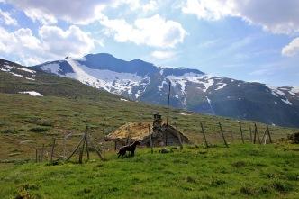 Cabin in Skihelledalen