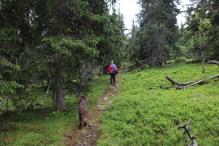 On a path
