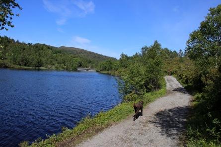 Towards the dam