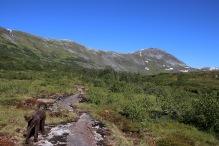 Skihelledalen and Ørnefjellet