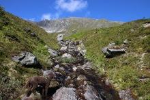 Towards Litledalshornet
