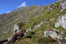 Almost on the ridge