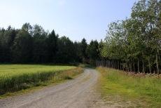 The trailhead at Rønningen