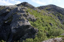 The ridge divides into two parts