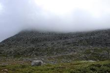 Towards Markahornet