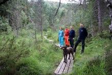 On the Dyrkyrkja trail