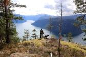 Sognefjorden view