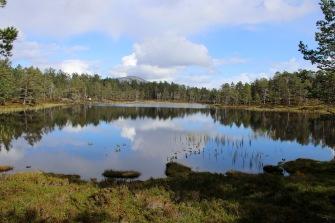 Lomstjørnane lakes