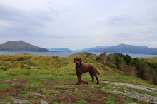 On top of Molnesfjellet