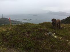 On top of Storehanen
