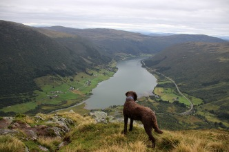 Sogndalsdalen view