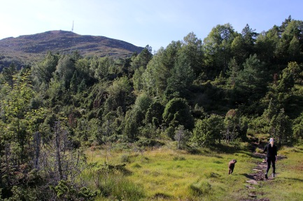 Towards the east ridge
