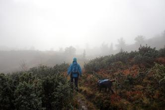 On the southeast ridge path