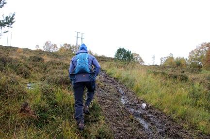 Up a muddy path