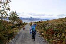 On the Sandvikdalen road