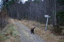 At the Solavågen trailhead