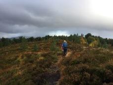 Across Osberget