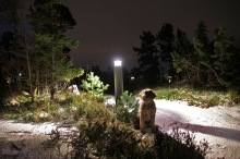 Enjoying the lit trail