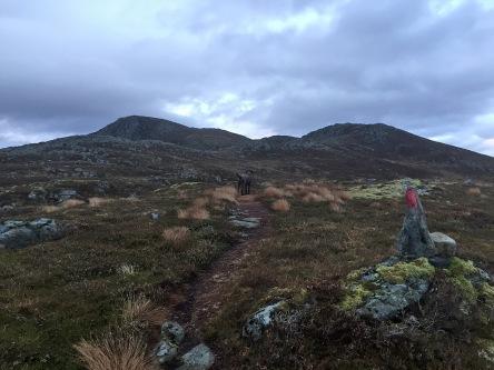 Blåtind ahead