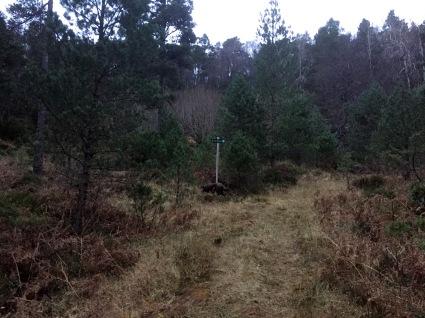 On the path to Gyrinakken