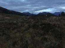 Across the horrible meadow