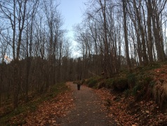 Up to the Aksla ridge