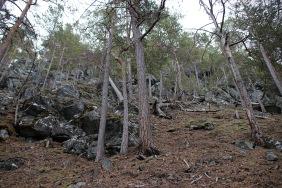 More steep terrain