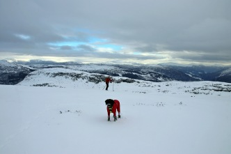 On top of Helleberget