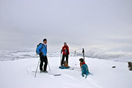 On top of Høgehaug