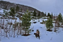 On the Grødet path