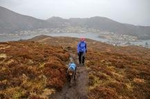 Towards Hornseten