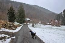 Snowing at Haddal