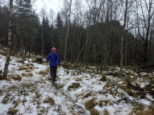 Towards Raudehaugen