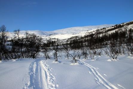 Breaking off towards Storakupa
