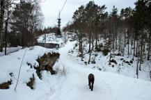 Approaching Rundskue